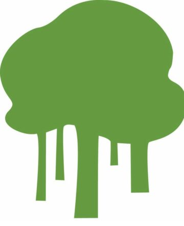 Coalition for Rainforest Nations