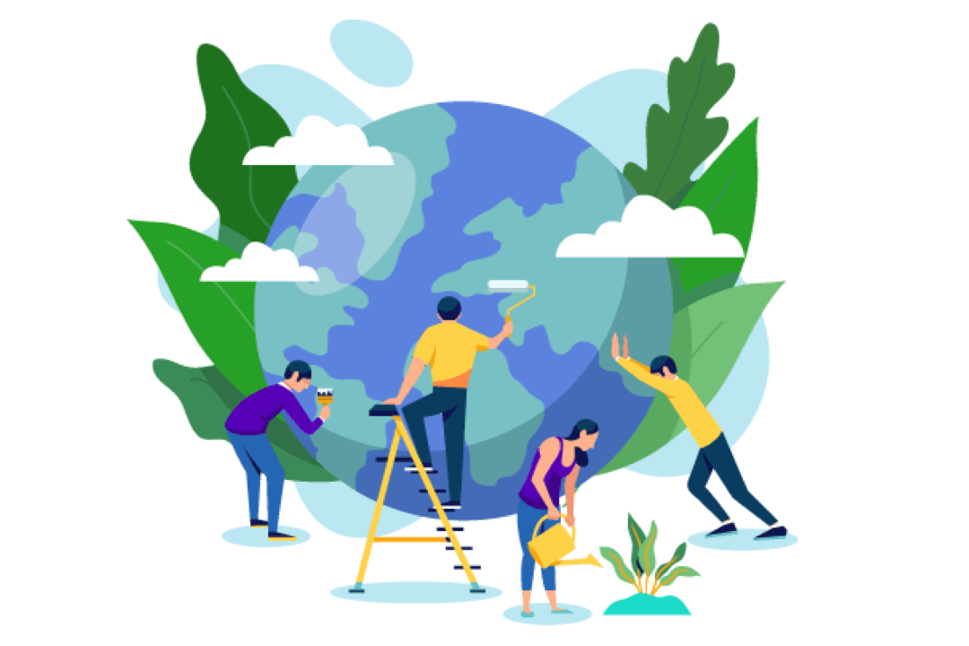 preserve rainforest
